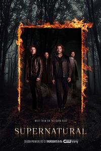 Supernatural Season 14 DVD Boxset