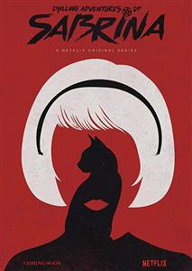 Chilling Adventures of Sabrina Seasons 1 DVD Set