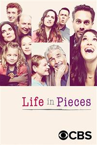 Life in Pieces Seasons 1-4 DVD Set